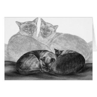 Siamese Cats Drawing by Kelli Swan Card