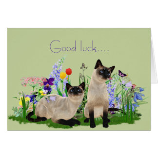 Siamese Cats Note Card