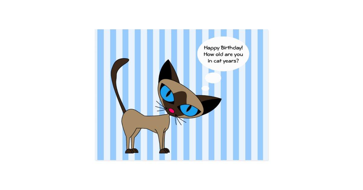 Siamese Happy Birthday Cat Years Postcard Zazzle