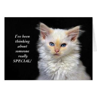 Siamese Kitten Birthday Humor Card