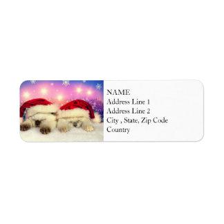 Siamese Kitten: Santa Twinsies Return Address Label