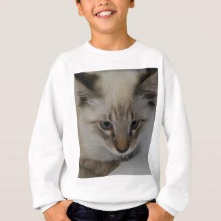 Siamese Kitten Sweatshirt