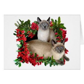 Siamese Kittens in Berry Frame Greeting Card