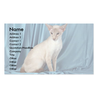 Siamese, lilac point pack of standard business cards