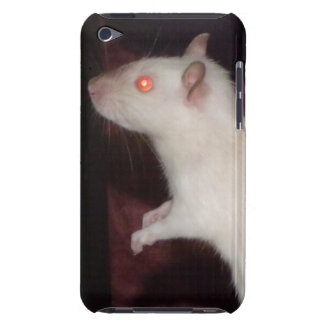siamese rat ipod touch case mate