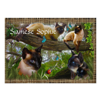 Siamese (your kitties name) poster