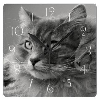Siberian Cat Square Wall Clock