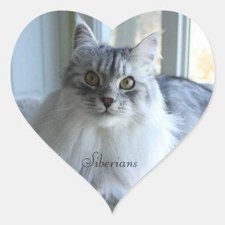 Siberian Cat Stickers