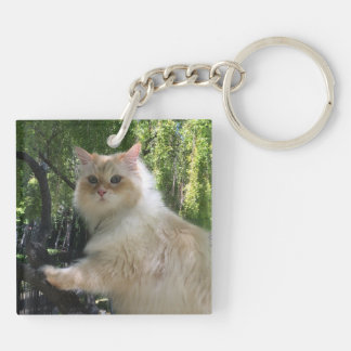 Siberian Forest Cat (Double Sided) Double-Sided Square Acrylic Key Ring