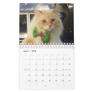 Siberian Forest Cat Wall Calendars