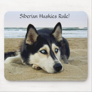 Siberian Huskies Rule Mousepad