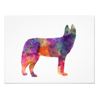 Siberian Husky 01 in watercolor Photographic Print
