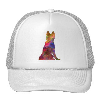 Siberian Husky 02 in watercolor Cap