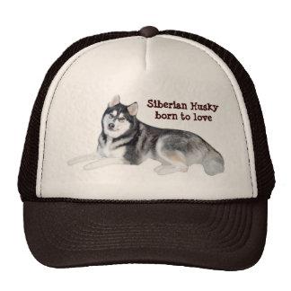 Siberian Husky Beautiful Hat