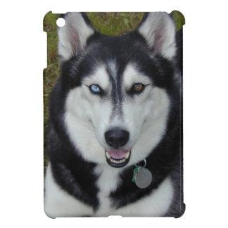 Siberian Husky Blue Eye Brown Eye Beauty iPad Mini Covers