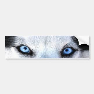 Siberian husky blue eyes bumper sticker