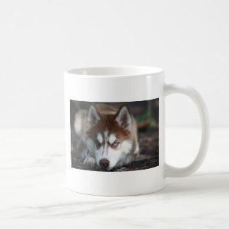 Siberian Husky Blue Eyes Dog Mug