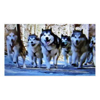 SIBERIAN HUSKY BUS / PERSONAL CARD PACK OF STANDARD BUSINESS CARDS