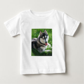 Siberian Husky Dog Baby T-Shirt