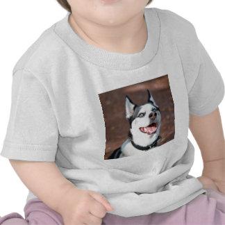 Siberian Husky dog blue eyes T-shirts