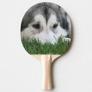 Siberian Husky Dog Ping-Pong Paddle