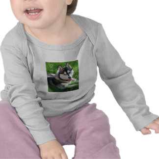 Siberian Husky Dog Infant T-Shirt