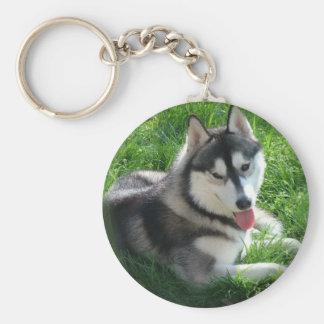 Siberian Husky Dog Keychain