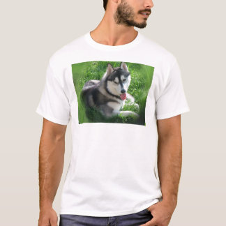 Siberian Husky Dog Men's T-Shirt