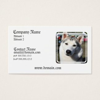 Siberian Husky Dog Photo Business Card