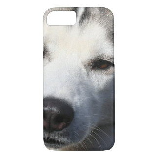 Siberian Husky Dog Photo iPhone 7 Case