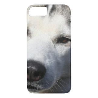 Siberian Husky Dog Photo iPhone 8/7 Case