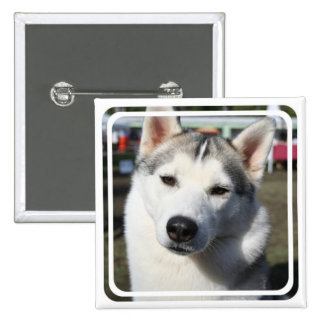 Siberian Husky Dog Square Pin