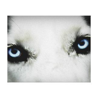 Siberian Husky Eyes Canvas Print