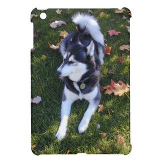 Siberian Husky & Fall Leaves Case For The iPad Mini