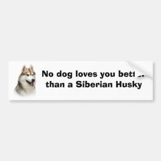 Siberian Husky Gorgeous Bumper Sticker