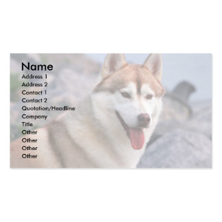 Siberian Husky Pack Of Standard Business Cards