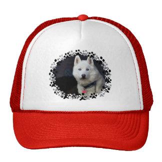 Siberian Husky Photo Cap