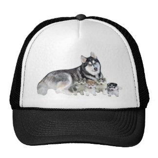 Siberian Husky & Puppies Hat