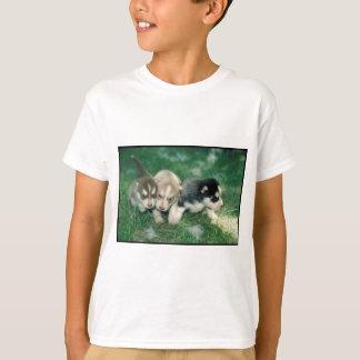 Siberian Husky Puppies Tee Shirt