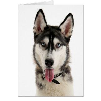 Siberian Husky Puppy Dog Hello Love Miss You, Card