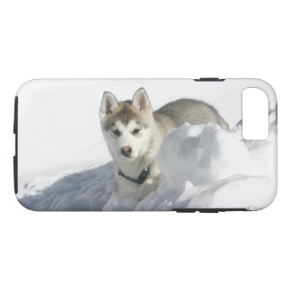 Siberian Husky Puppy in snow iPhone 8/7 Case