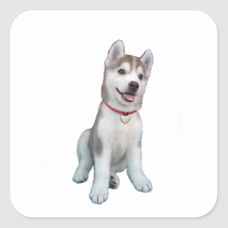 Siberian Husky Puppy Square Sticker