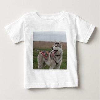 Siberian Husky sled dog Baby T-Shirt