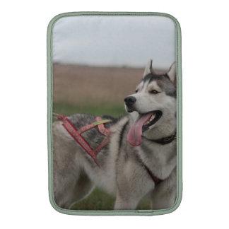 Siberian Husky sled dog MacBook Sleeve