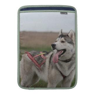 Siberian Husky sled dog MacBook Air Sleeves