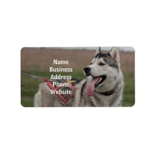 Siberian Husky sled dog Label