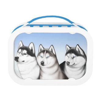 Siberian Husky Sled Dogs Lunch Box