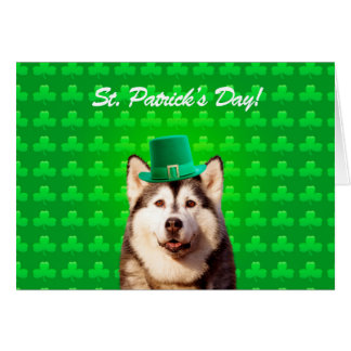 Siberian Husky St Patricks Day Clove Greeting Card