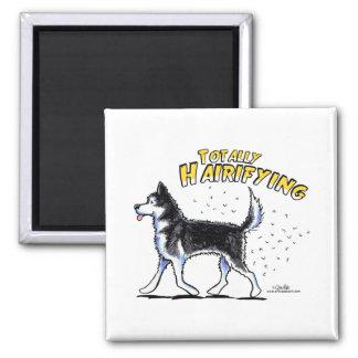 Siberian Husky Totally Hairifying Square Magnet