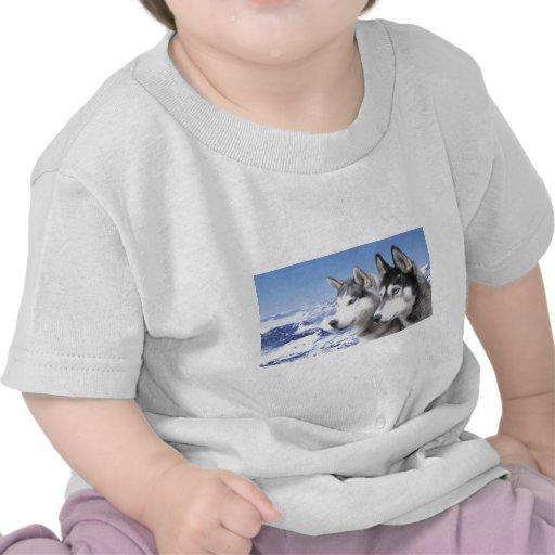 Siberian Husky T-shirt